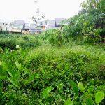 Dijual Tanah Bersertifikat Hak Milik Dengan Ukuran 10x33 Meter.