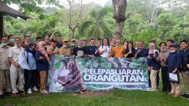 Photo of Peduli Orangutan, Pupuk Kaltim Serahkan Bantuan Mobil Senilai Rp 425 Juta kepada BOSF