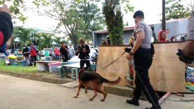 Photo of Dalami Dugaan Kematian, Polisi Kerahkan Anjing Pelacak Telusuri Musabab Menghilangnya Yusuf di PAUD