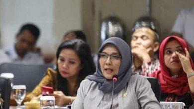 Photo of UU Minerba Dinilai Tidak Berpihak Pada Rakyat, Aji Mawar: DPR RI Hanya Untungkan Pemodal